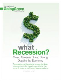 going green guidebook 2011